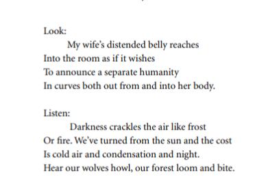 Sonnet—For Solstice